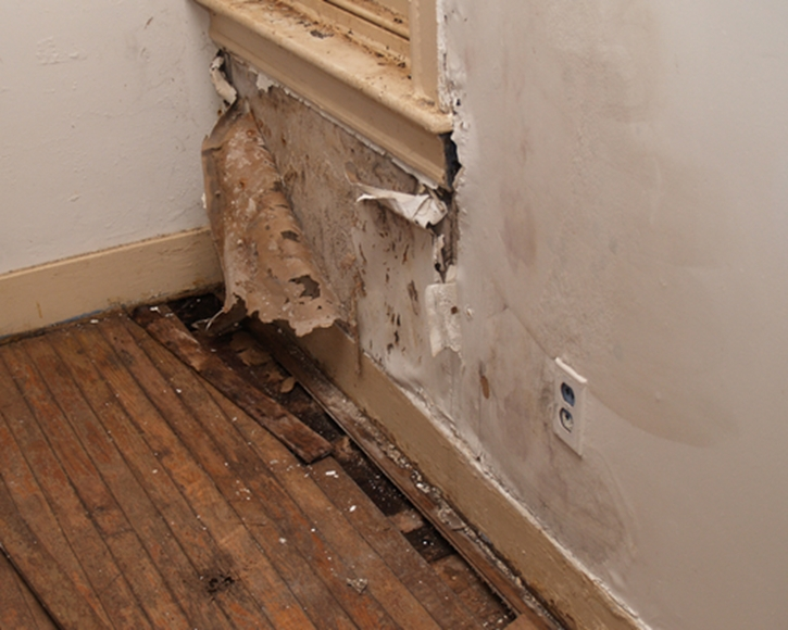 Restoration companies need the best tools at hand to mitigate moisture damage.